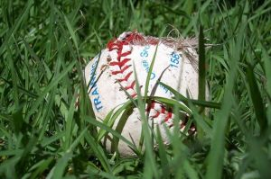 Baseball_in_the_grass